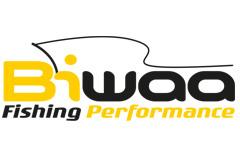 Biwaa Logo 240x160